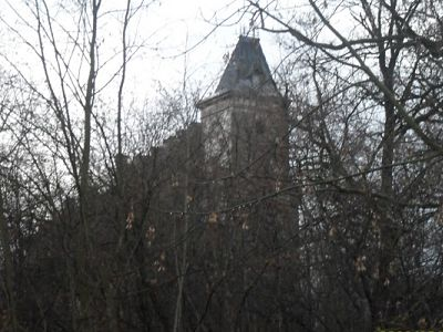 Castle Homes is my own family castle story with it's roots in Poland.jpg